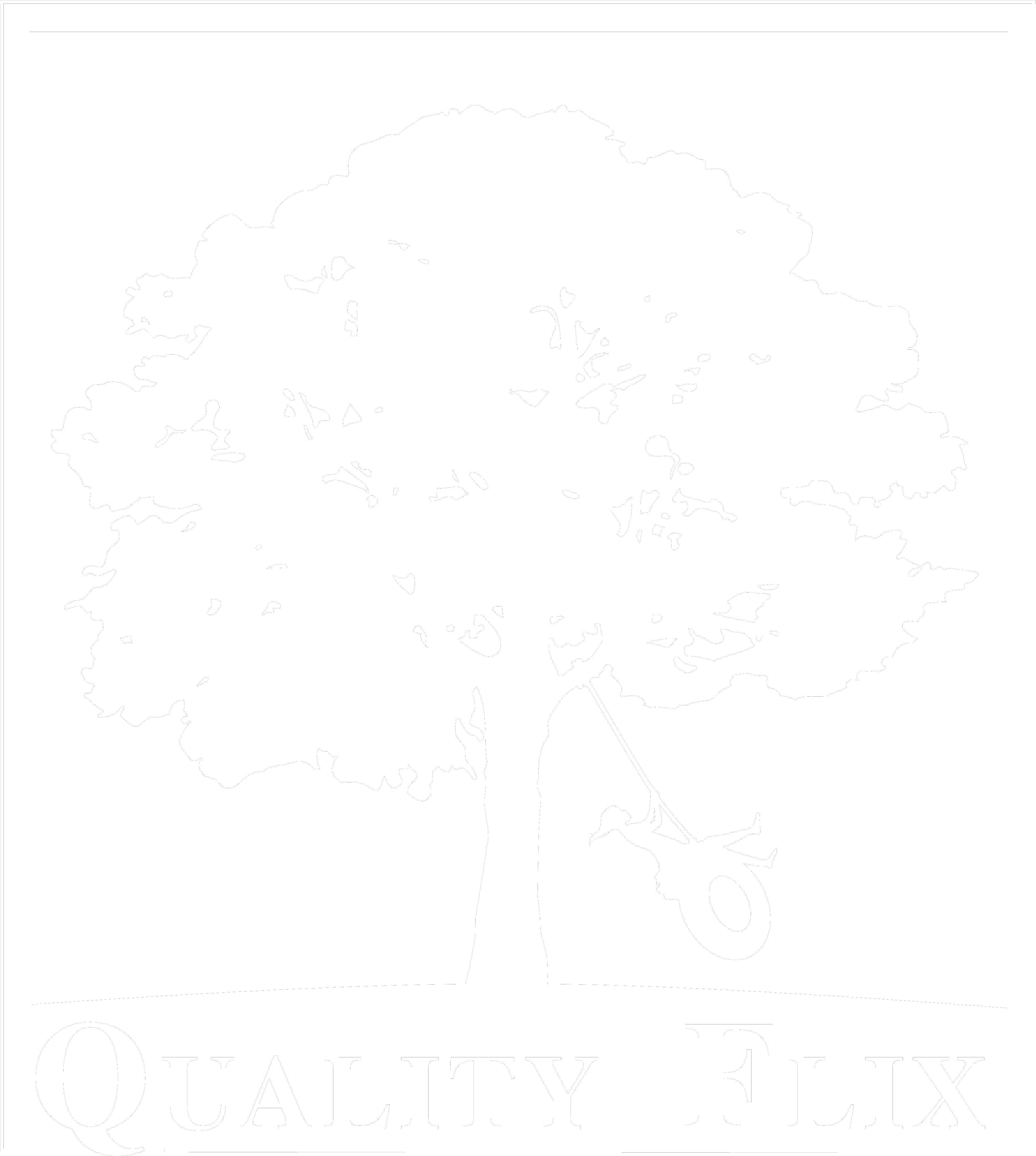 QualityFlix